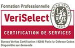 Cours et formation en langue espagnol, anglais, allemand, italien, russe, arabe, français, japonais, chinois CPF/DIF Paris, Toulouse, Lyon, Bordeaux, Lille, Marseille, Nice